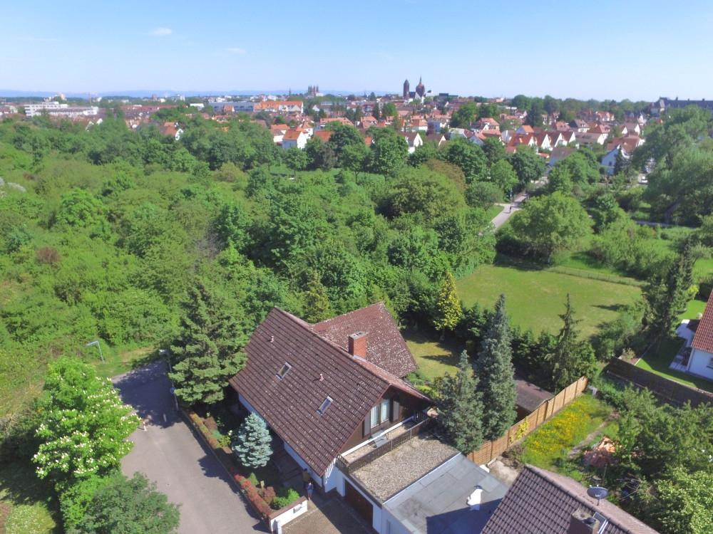 Natürlich schön! EFH mit idyllischem Südgrundstück in innenstadtnaher Grünlage! Worms-Hochheim, 67549 Worms, Einfamilienhaus